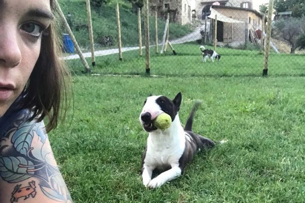Dafne e il suo bull terrier
