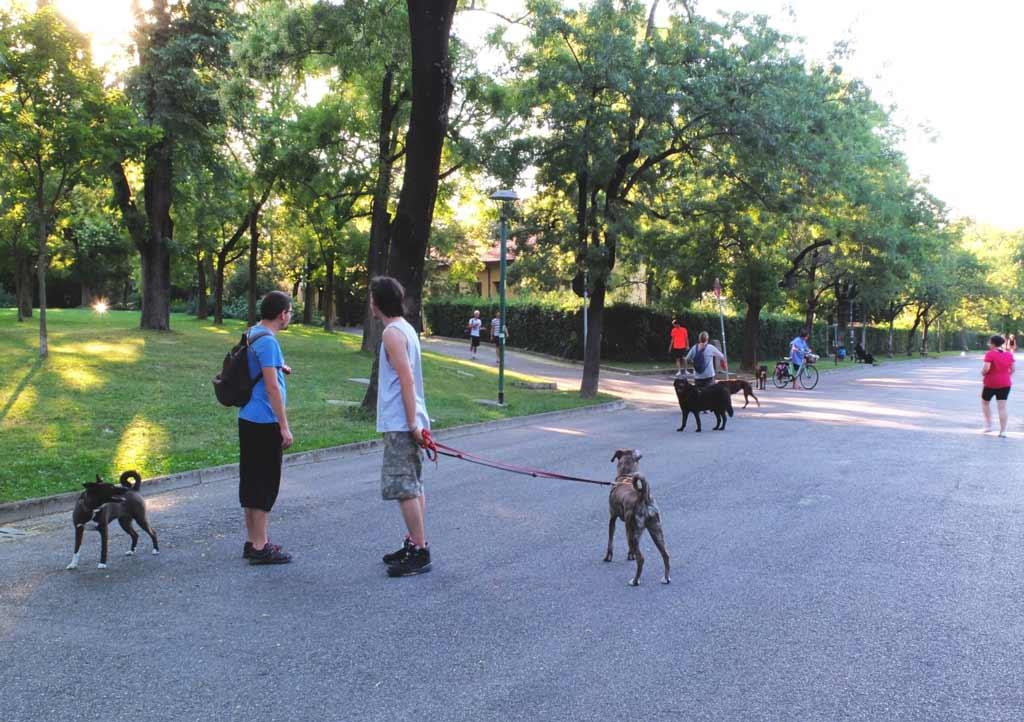 guardini margherita, il parco più grande nel centro di Bologna