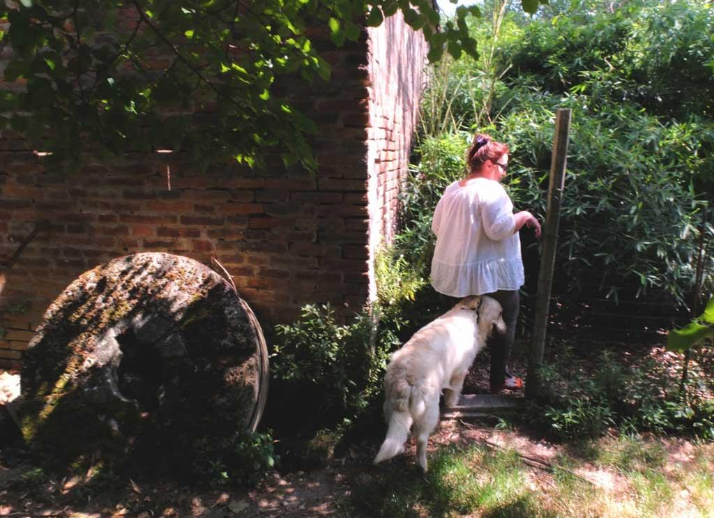 Maria Grazia e il mulino nel quale alleva i suoi Golden Retriever