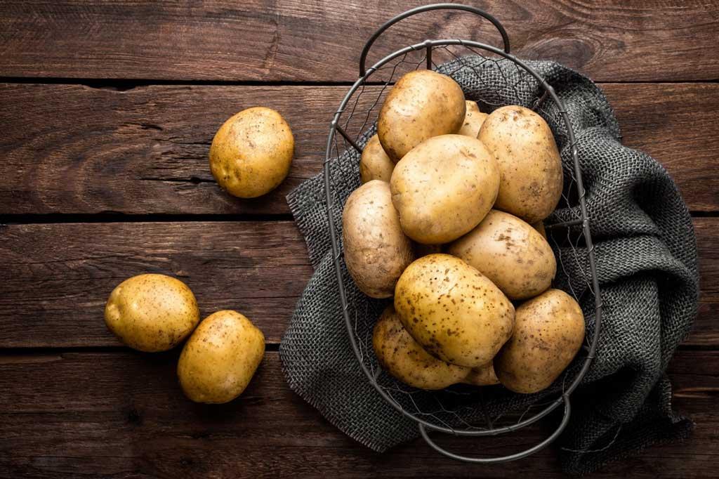 patate, tra le materie prime delle crocchette per cani FEED-0
