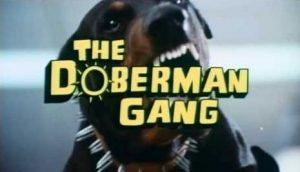 """Copertina del film """"La gang dei Doberman"""""""
