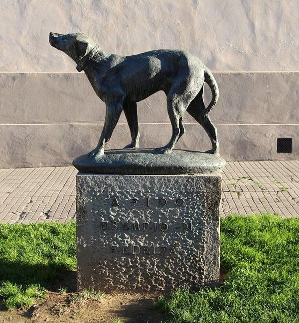 cani come esempio di fedeltà