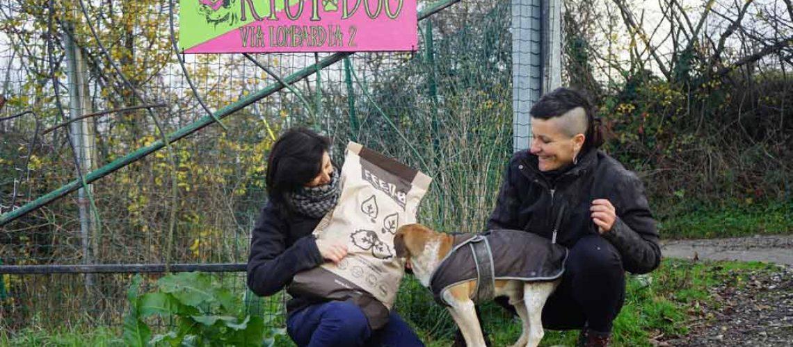 volontarie del rifugio riot dog